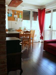 Przestronne mieszkanie od września do lutego!