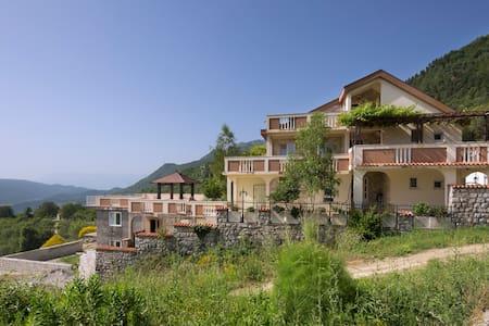 Vacation house near Budva 2