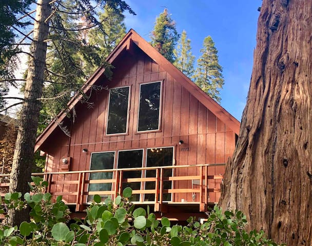 Secluded ~ Heated ~ Modern ~ Ponderosa Loft