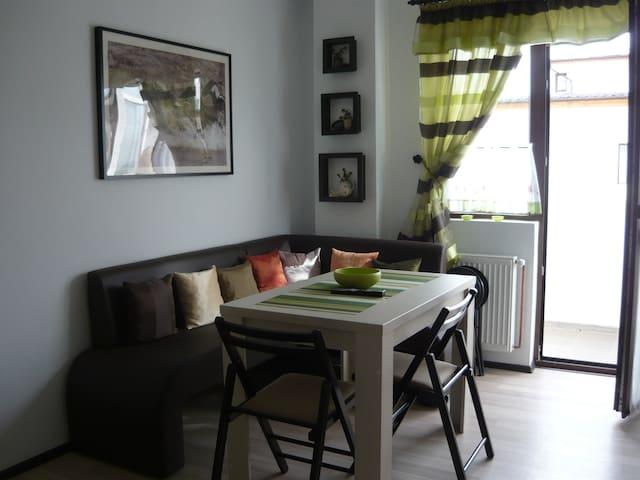 Cozy and Modern Apartment near Shopping Area - Șelimbăr - Leilighet