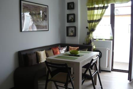Cozy and Modern Apartment near Shopping Area - Șelimbăr - Huoneisto