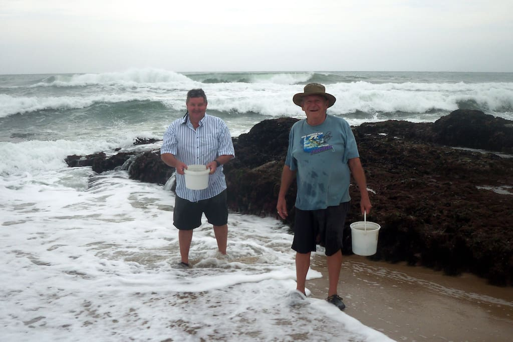 Host & guest collecting mussels off the rocks, which are the cooked or smoked - yum!