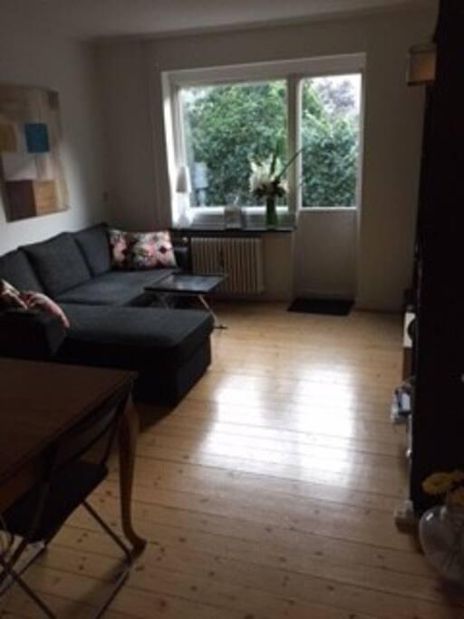 Sofaen kan laves om til seng til 2 personer. Der er spisebord og tv.