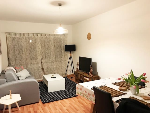 Beautiful 2.5 Rooms (2BR) Apt. in Basel