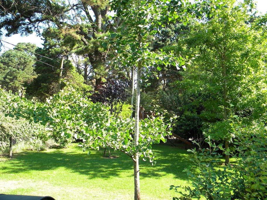 Vista Jardín