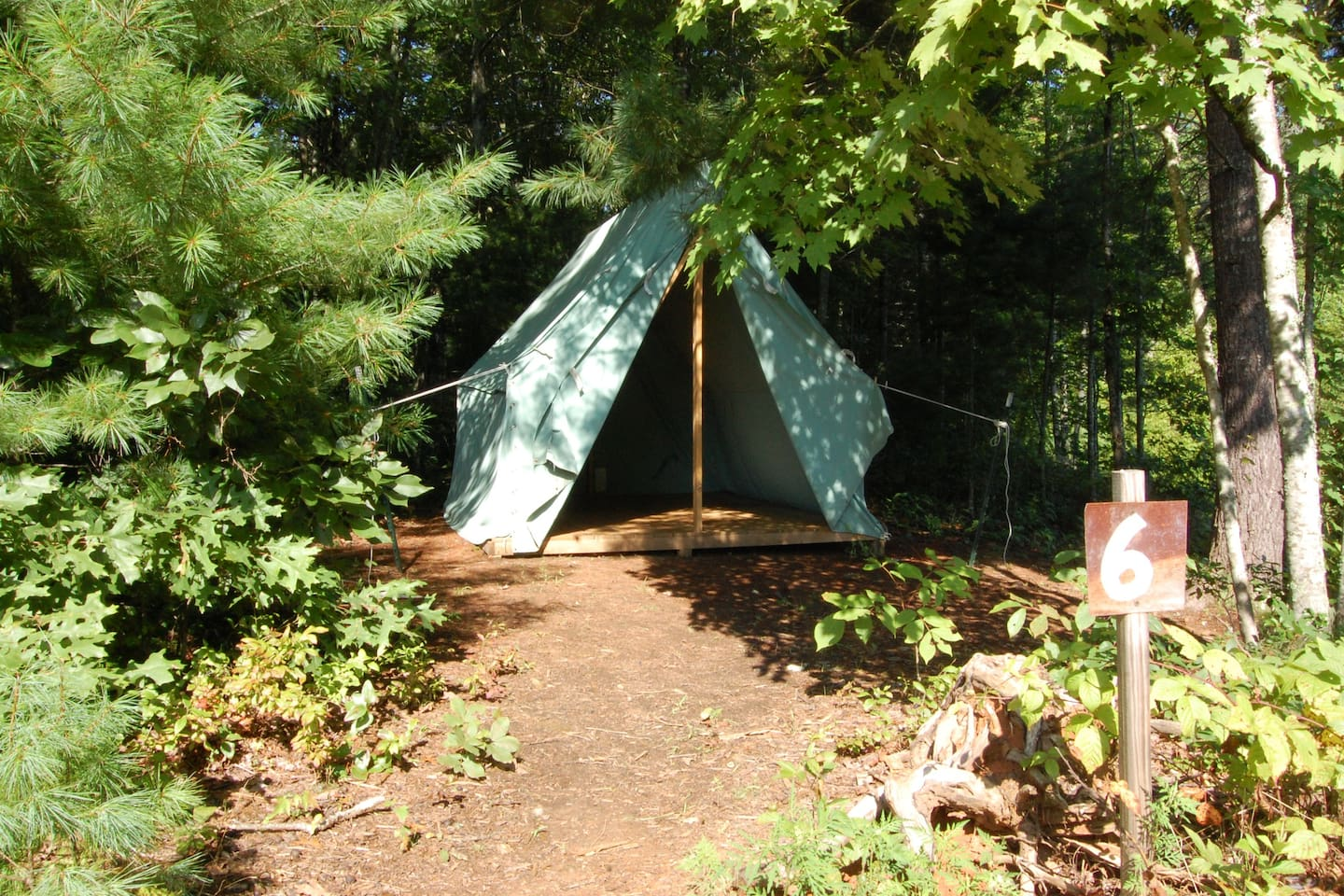 """The """"Woods Tent"""" is tucked away in the trees"""