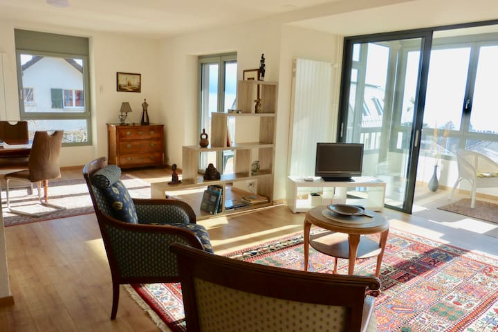 170 Apartment Grand Standing view lake Léman - Pully - Appartement