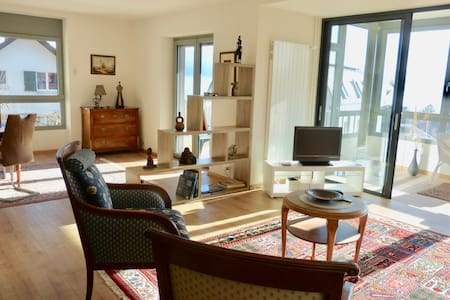 170 Apartment Grand Standing view lake Léman - Pully - アパート