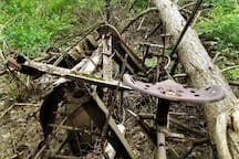 You might like the antique farm machinery  - on the walk...
