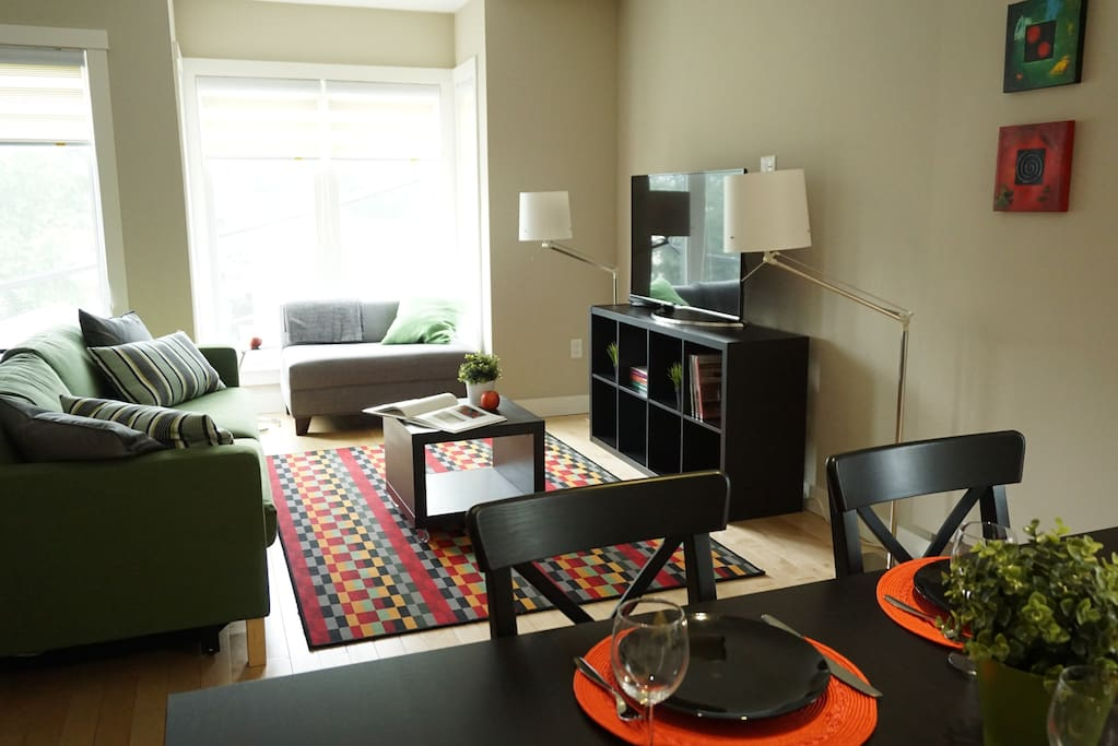 2br lux apt near fresh pond harvard apartments for rent in cambridge massachusetts united states. Black Bedroom Furniture Sets. Home Design Ideas