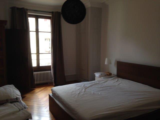 Haussmannian style 2BR Center - Genève - Apartment