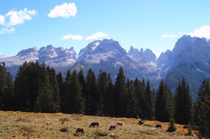 Alta valle di Non - Dolomiti