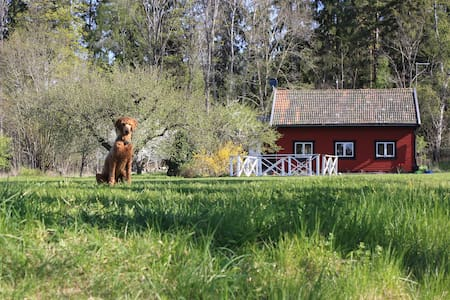 Stay in paradise between city and airport - Upplands Väsby - 住宿加早餐
