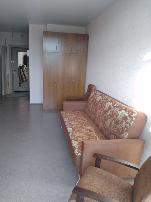 General view of the room and the sofa-bed.