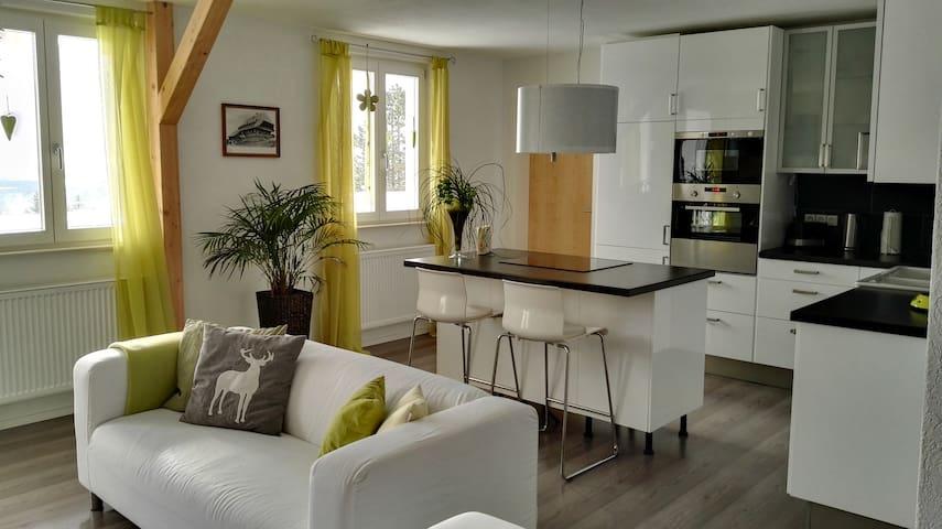 "Fewo "" Im Sängerhaus "" - Ühlingen-Birkendorf - Pis"