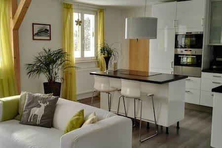 """Fewo """" Im Sängerhaus """" - Ühlingen-Birkendorf - Apartament"""