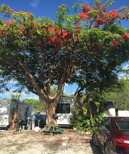 RV Lot  Land Only - Big Pine Key - Andre