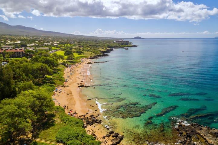 Maui Banyan Remodeled Studio Across Kamaole Beach
