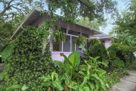 The Purple House by Tulane-HAS POWER