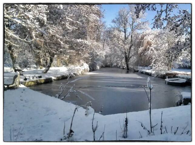 Le bief du moulin / The Mill canal in winter