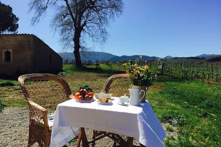 Un'oasi tra vigne, ulivi e ciliegi - Malvito