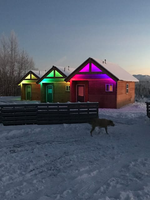 Aurora Lights Cabin: Moose