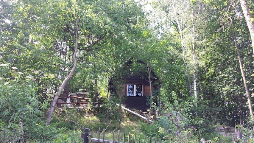 Wanderhütte der Zweisiedler - am Malerweg - Pirna - Hut