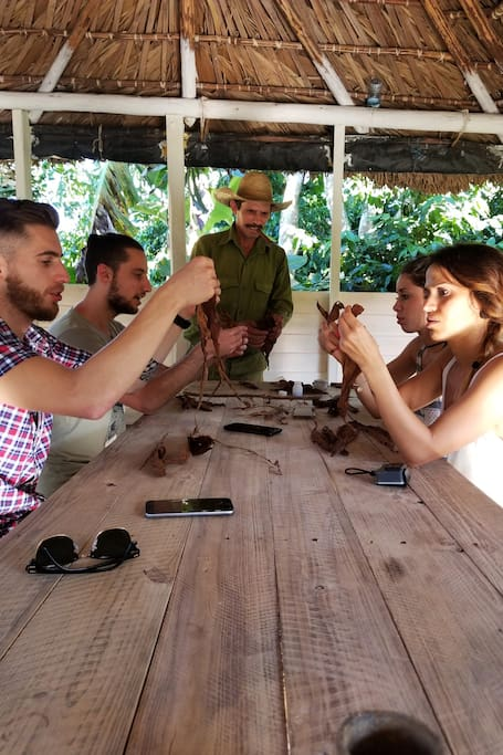 Rolling your own organic cigar
