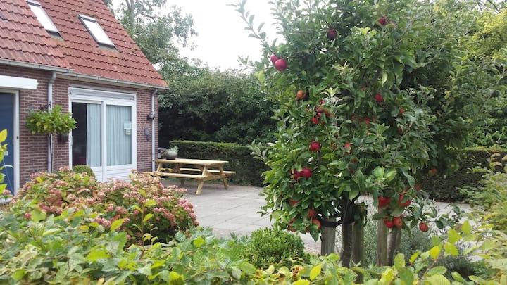 Domburg32, fijn vakantiehuisje, wifi, strandcabine