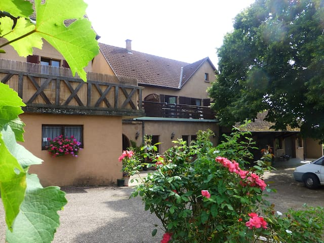 "LE"" RIESLING "",gîte rural à RIBEAUVILLE, ALSACE"
