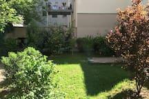 Blick aus dem Fenster in den Garten