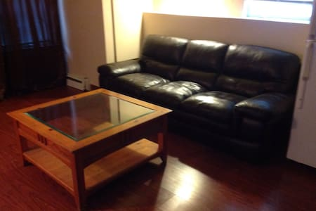 Charming one bedroom apartment - Massapequa - 公寓
