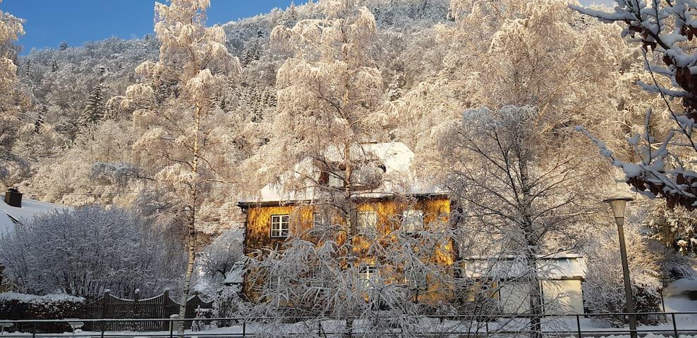 Gästehaus Grogger  -  Nationalparkgemeinde Weyer