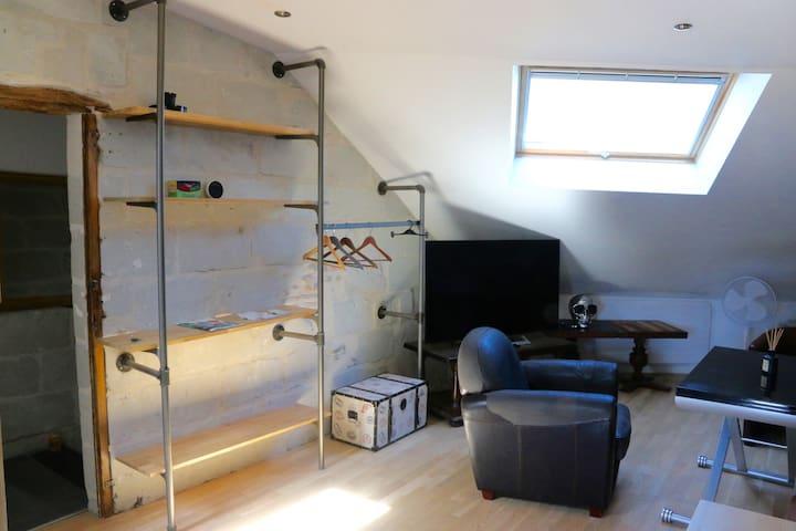 appartement lumineux place bichon