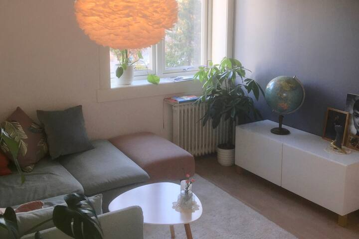 Cosy flat in pretty Sagene with stunning rooftop