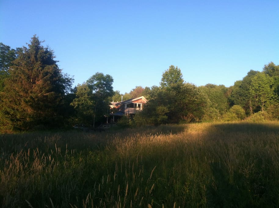 House from neighboring meadow