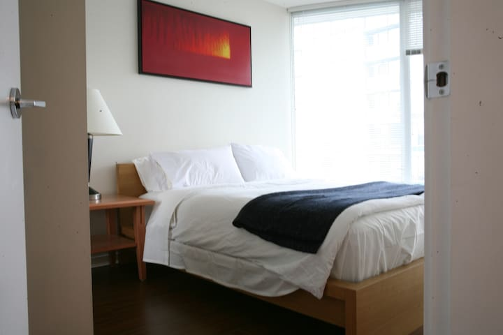 Beautiful Downtown 1 bedroom APT + Free Parking