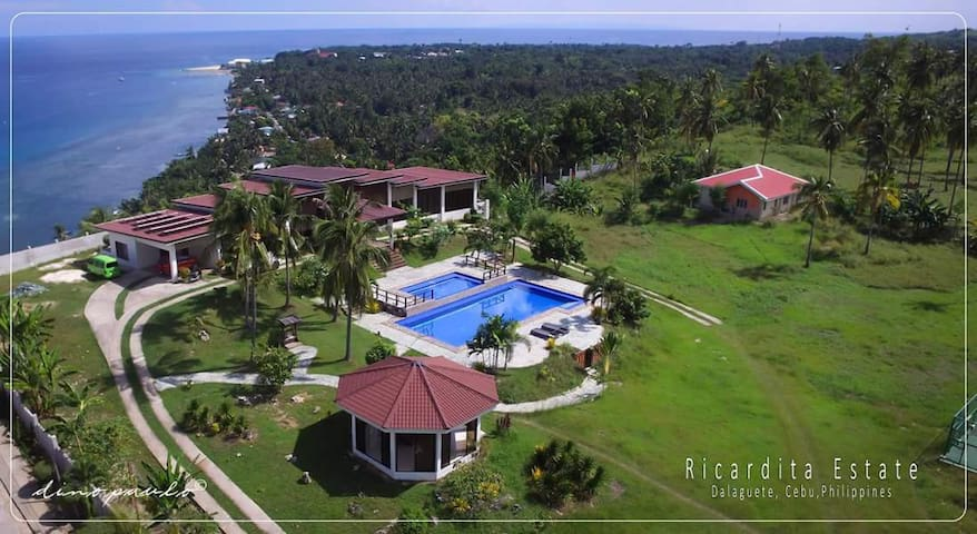 Modernistic Large House and Big Swimming Pool Cebu - PH - House