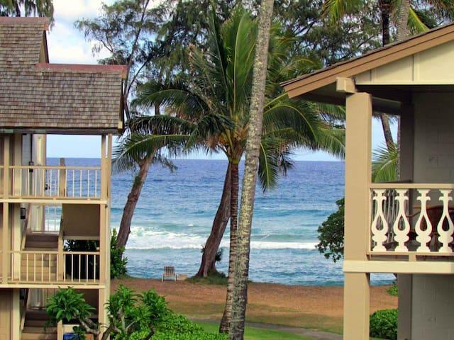 Ocean/Garden View 370