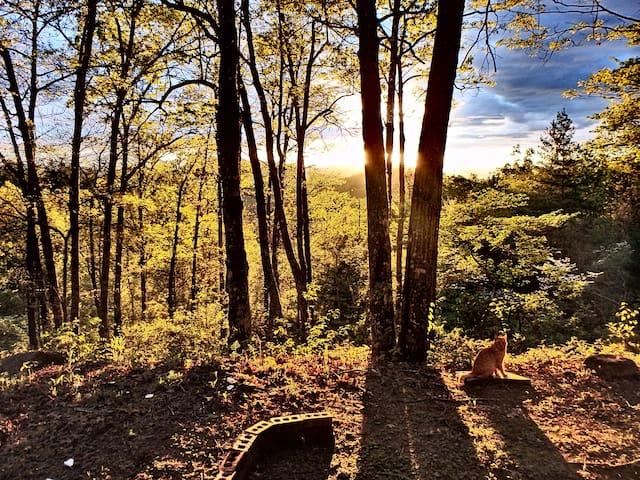 _/\_ The Oaken End Campsite _/\_
