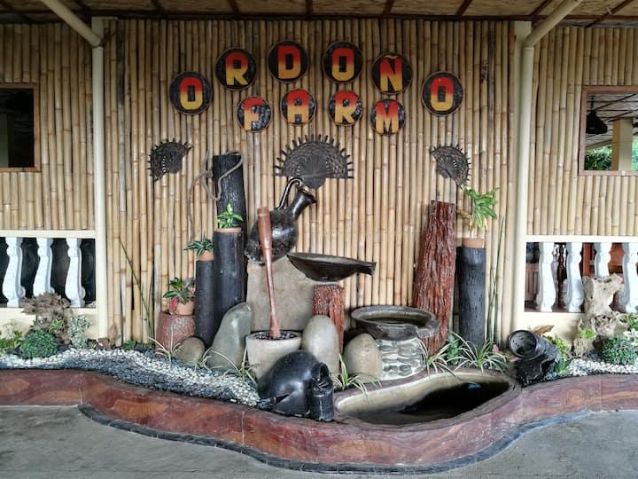 Ordoño Farm Resort - Room#1 good for 2 persons