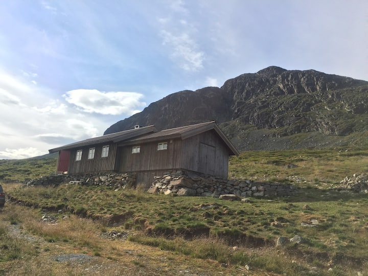 Mountain cabin at the doorstep of adventure in Ål