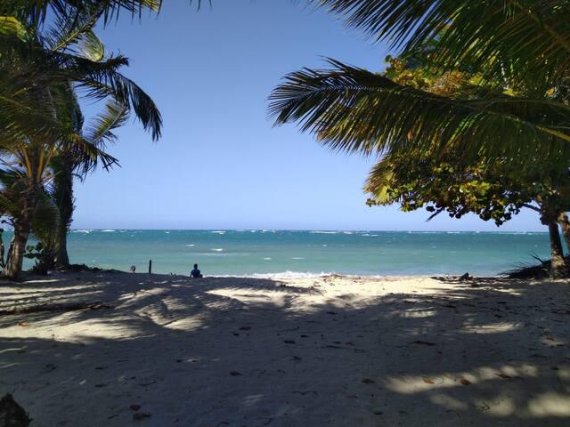 Beachfront house in the Caribbean