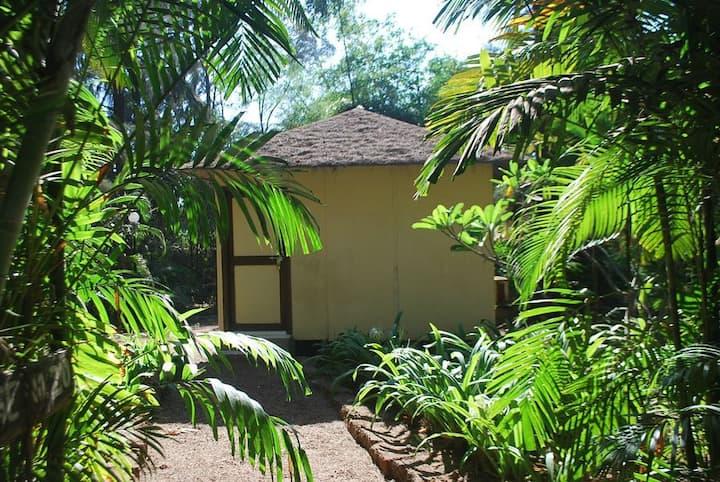Exotica The Beach Resort Ac Cottage