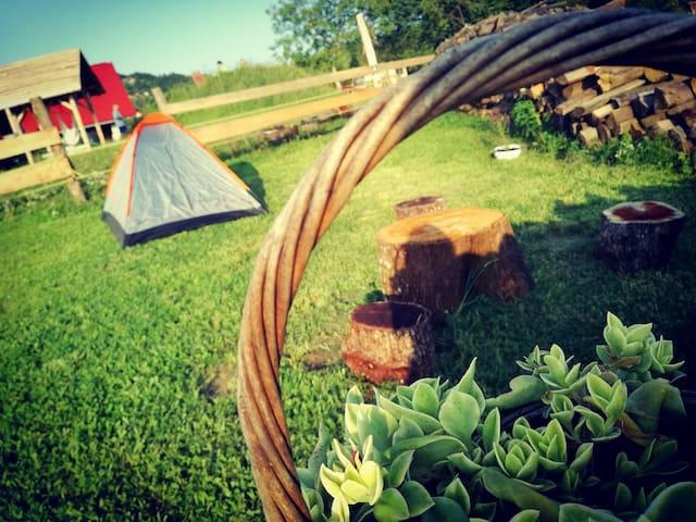 Ranč pri Geti - Camping with animals