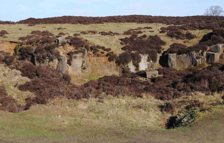 One of the Old Quarry workings on Stanton Moor dating back to Druid times