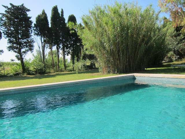 La piscine dans la verdure, 12 m X 5 M