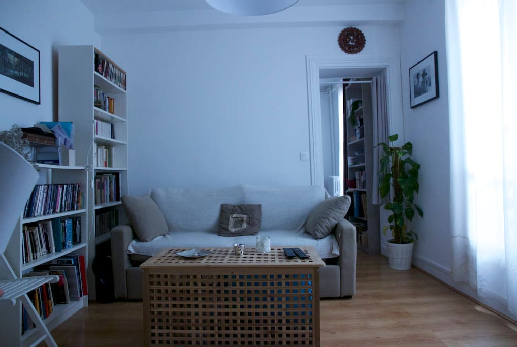 Living room with convertible couch