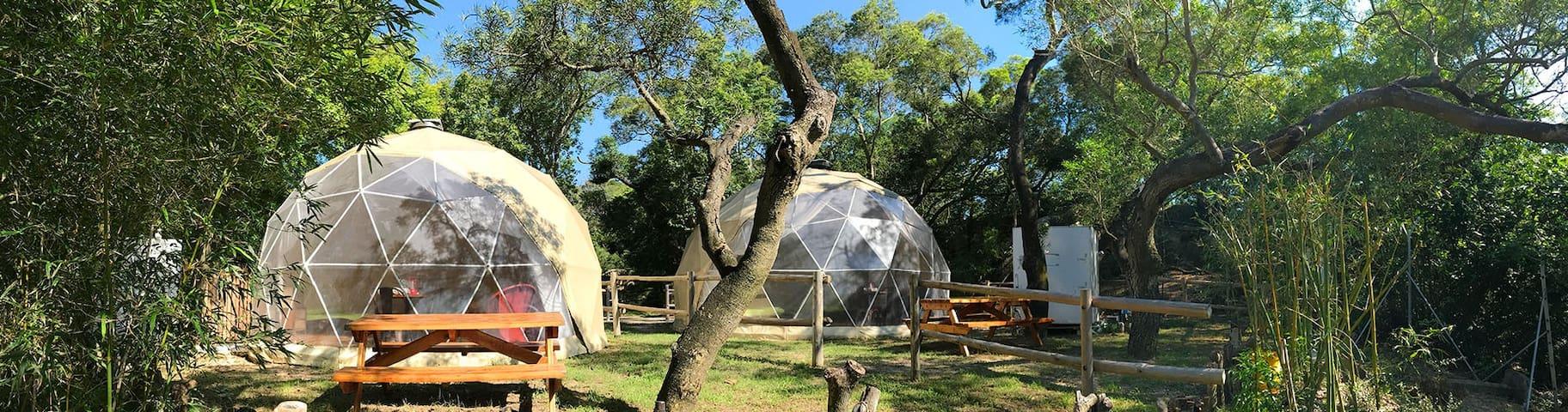 Star GazingGeodesic Dome
