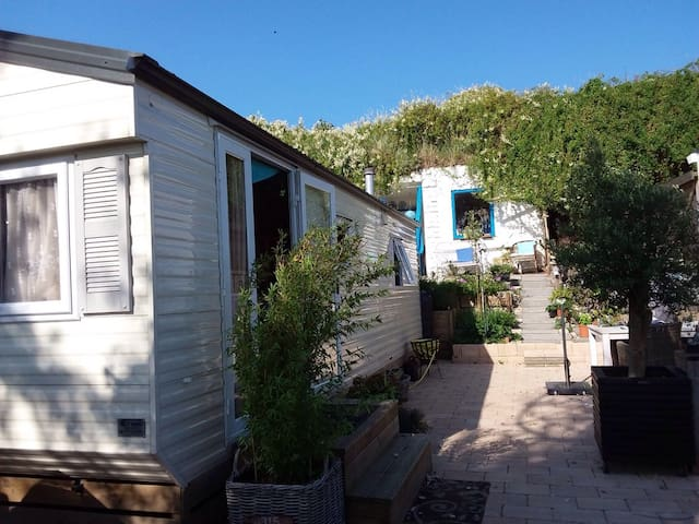 Beach cottage 1h from Amsterdam - IJmuiden - 小木屋